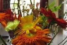 JO / Flowers
