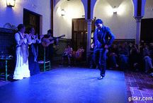 Casa del Flamenco Seville