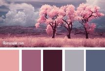 in color balance