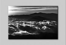 Black and White Pigment Prints / Black and white prints on large canvas or fine art matte paper.