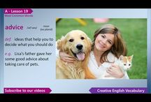English - Vocabulary (Intermediate)