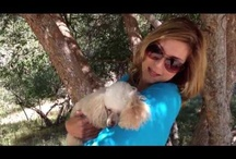My Videos :) / Me and my favorite doggies, including client doggies too!