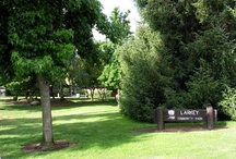 Make a Day of it! / Lindsay Wildlife Museum is located in the beautiful city of Walnut Creek. Plan a great day trip featuring Lindsay Wildlife Museum and other hometown highlights.
