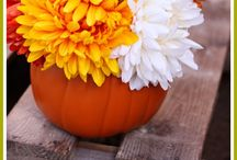 Fall decor ideas / Fall party or reception ideas. Bit of shabby chic, and white pumpkins rule!