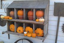 Pumpkin Patch Pretties