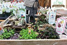 Fairy Gardening / All about fairy gardening!