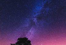 Trea in The night sky
