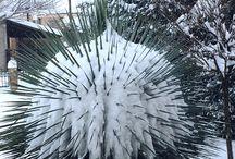 Winter Greece
