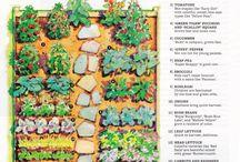 Mappe dell'organizzazione del giardino