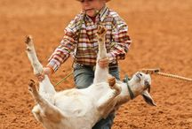 Lil Cowboys
