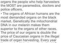 Black Organ