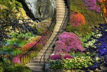 up the stairs...