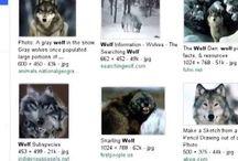 Laloba Press / Laloba: Become the wolfwoman!