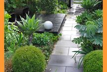 Outdoor ideas for the house