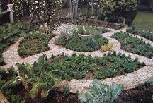 Garden/Outdoors / by Mystique Haslup