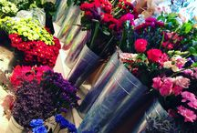 Flower stand / Internal shop images