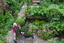 Gardens / Inspiring