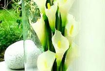 arreglos florales lobbies