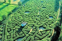 Maze and labyrinth