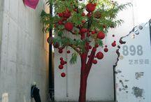 garden / by Paula Wellings