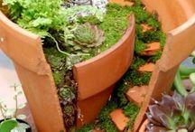 Lite trädgård