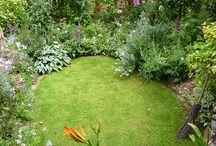 Little gardens