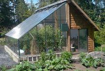 HOUSE gardening