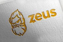 Zeus / We designed a logo for a unique software for financial counselors.