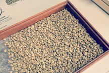Roasting and Cupping / Behind the scenes in the Bennetts quality lab.