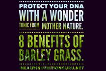 Healthy organic supplements / Lose weight and boost your energy with the best of what Mother Nature has to offer