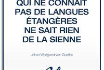 Inspiration / Belles citations sur les langues.