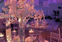 Wedding Ideas / by Christy Nickel
