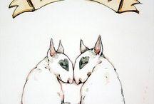 Bull Terrier Photos / Bull Terriers photos / NO Bosphorus Bulls Kennel Dogs... /