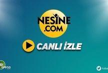 Arjantin Brezilya maçı canlı izle Nesine TV şifresiz canlı yayın