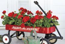 idea's for ttt flowers