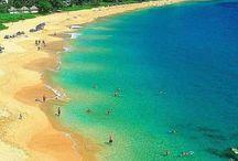 Maui Incentive Trip! / by Tara Zschokke