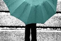 umbrellas - parapluies / by Stephanie Therien