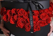 Valentine's Day / Ideas we love for the one you love.