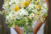 Ideas for Emma A / Flowers for an April barn wedding