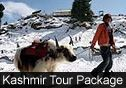 Kashmir Tour Packages from Canada