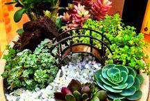 Blumentöpfe gestallten