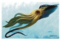 Beast ● Kraken