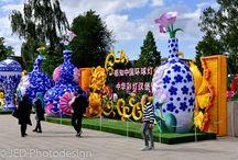 Chinese Lantern Festival 2017 - Hamburg (Wilhemsburg/Inselpark) / Impressionen vom Chinesischen Laternefest 2017 in Hamburg Wilhelmsburg - Rhododendrongarten