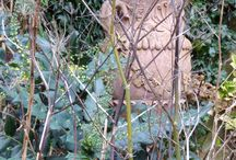 Bits and pieces of a winter Magic Garden / A wet winter's day in a neglected garden