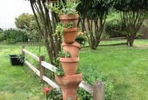 Garden / by Debbie Gepner