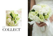 鮮花捧花_Bouquets / #Weddings #Weddingsphotography #weddingbouquets http://molding.wswed.com/molding_home/bouquet.html