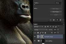 Photoshop Techniques:  Luminosity Masks