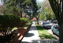 Neighborhood Views Maryland, DC and Virgina / Bethesda, MD Rockville, MD Washington, DC Potomac, MD Cabin John, MD Silver Spring, MD Maryland Washington, DC