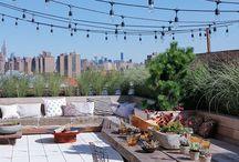 Rooftop terrace/garden