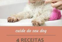 pasta para cães